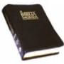 Bible Max