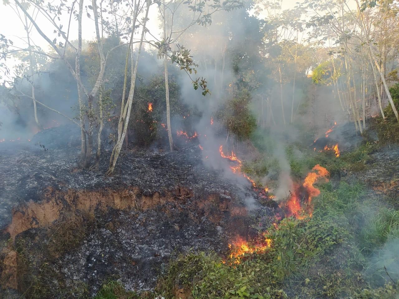 Incêndio em área de vegetação destrói cerca de dois hectares de terra no interior do Acre