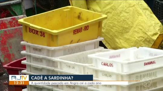 Queda na pesca da sardinha preocupa pescadores de Angra dos Reis