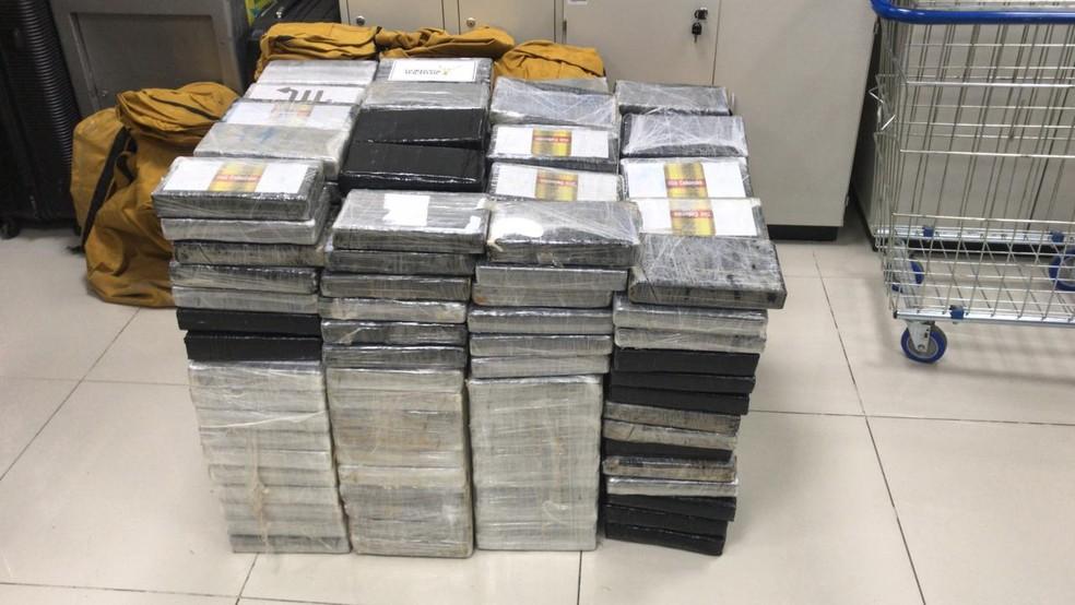 Cocaína seria embarcada em contêiner para o exterior — Foto: Divulgação/PF