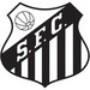 Santos Campeão da Libertadores 2011