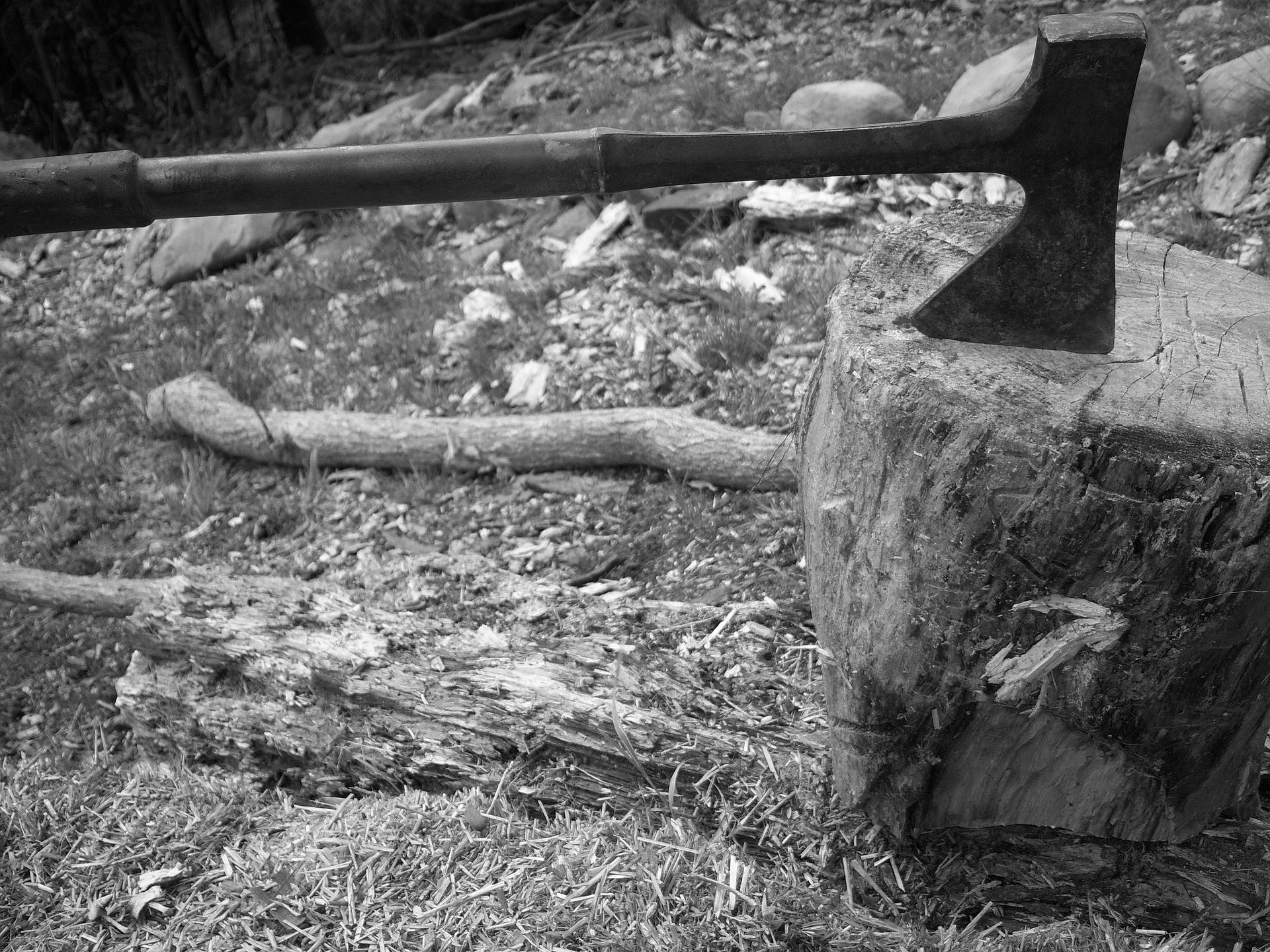 Desmatamento (Foto: Pixabay)