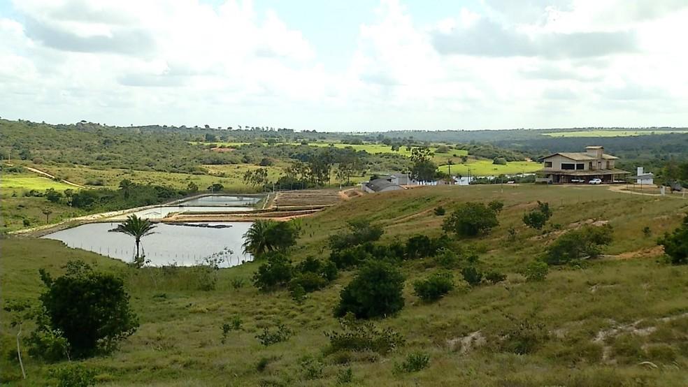 Fazenda em Brejinho, RN, tem mais de 60% de área preservada (Foto: Reprodução/Inter TV Cabugi)