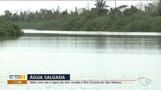 Moradores de São Mateus voltam a receber água salgada após mar invadir o Rio Cricaré