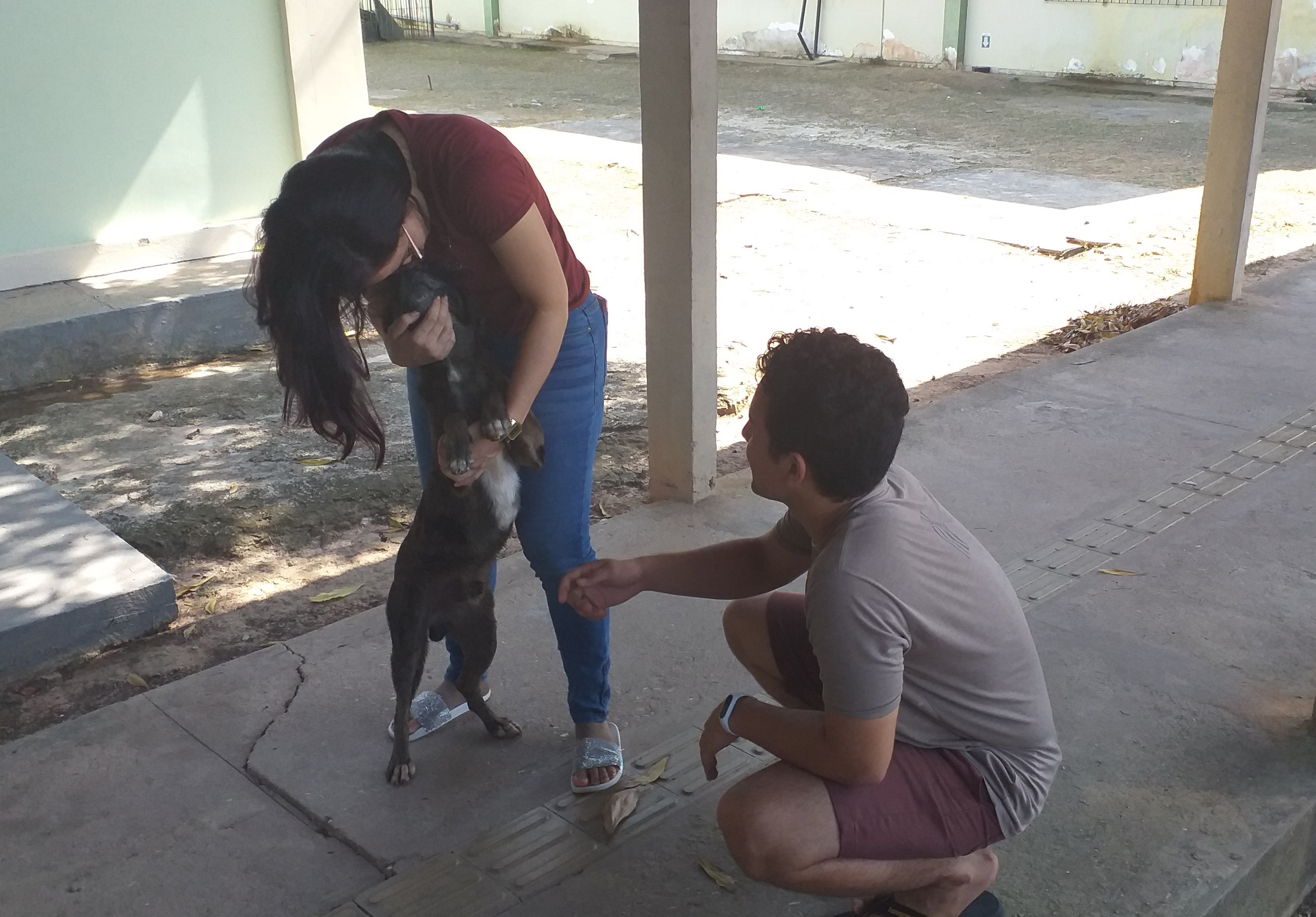 Universitários do AP fazem campanha para tratar câncer em cão 'morador' de campus - Notícias - Plantão Diário