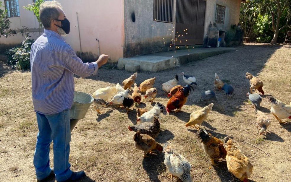 Grupo de fazendeiros que deixou chácaras por medo de Lázaro se une para alimentar animais: 'Muitos morreram de fome' — Foto: Guilherme Rodrigues/G1