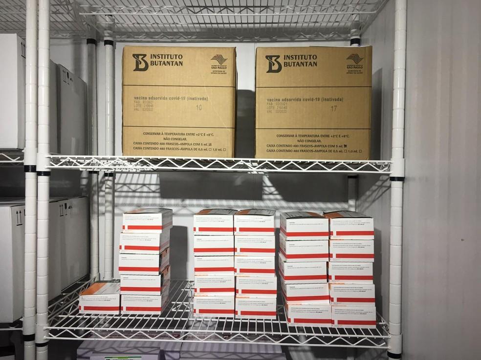 Caixas de vacina Coronavac e AstraZeneca/Oxford na Câmara Fria da central de distribuição da SES em Campo Grande — Foto: Carla Salentim/TV Morena