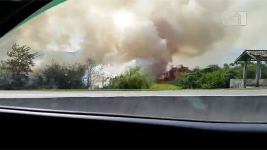 Incêndio atinge área de vegetação às margens da BR-101, em Rio Bonito, RJ; vídeo