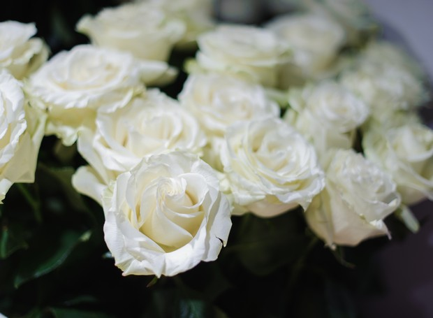 Rosas brancas (Foto: Thinkstock Photos)
