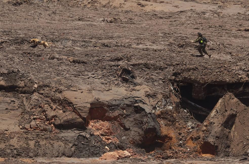 Especialista israelense acompanhando seu cão farejador em meio à lama em busca de vítimas em Brumadinho — Foto: Andre Penner/AP
