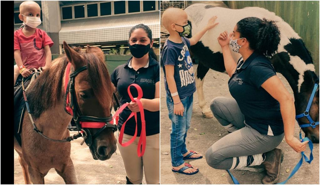 'Pôneiterapia': Pôneis auxiliam tratamento de crianças com câncer em São Paulo