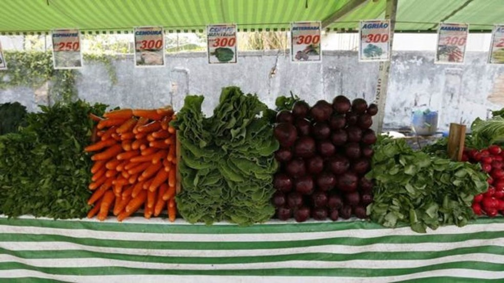 Alimentação saudável também pressupõe variação  (Foto: Cesar Ogata/Secom)