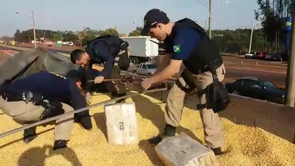 Fardos com maconha estavam escondidos em meio a carga de milho (Foto: PRF/Divulgação)