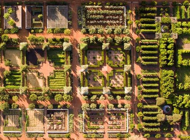 Jardim, pomar e horta de fundem na arquitetura verde da Babylonstoren, fazenda próxima à Cidade do Cabo (Foto: Reprodução)