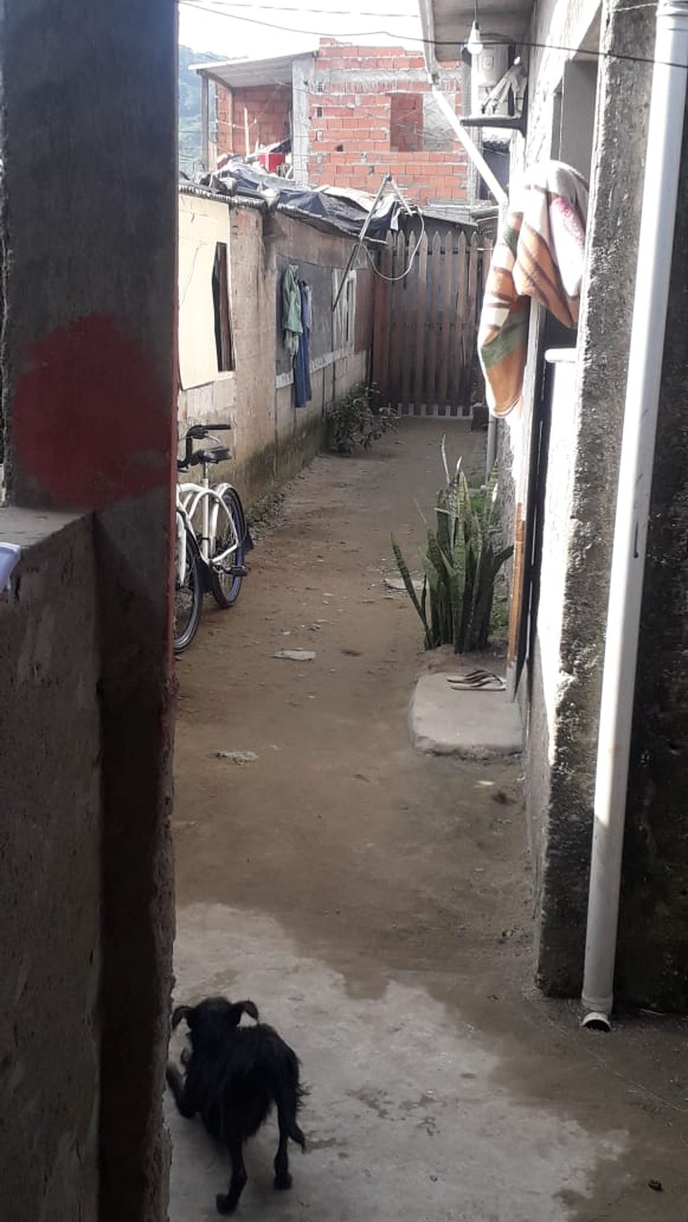 Criança estava brincando no quintal da casa, no bairro Vila Esperança, quando e mãe saiu para pagar uma conta — Foto: Arquivo Pessoal