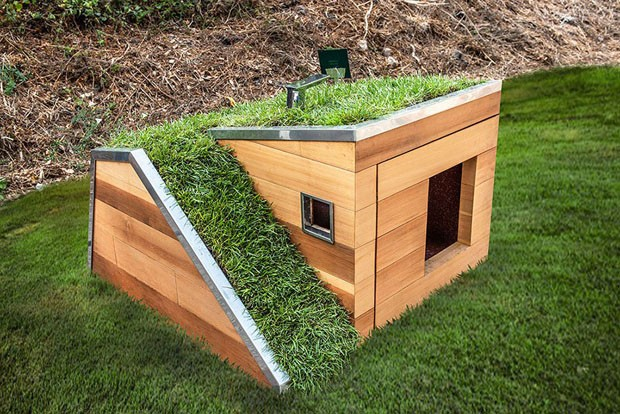 Casinha de cachorro com telhado verde promete refrescar seu pet (Foto: Divulgação)