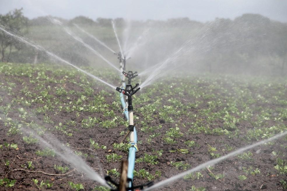 A demanda por água para irrigar plantações mais do que dobrou no último meio século, diz o WRI, e a irrigação responde por cerca de 67% da água consumida a cada ano. — Foto: Pixabay