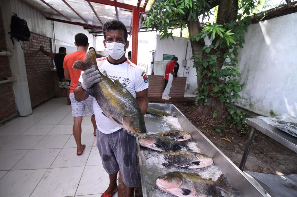 Tambaqui é vendido em feira a partir de R$ 8 por quilo em Manaus