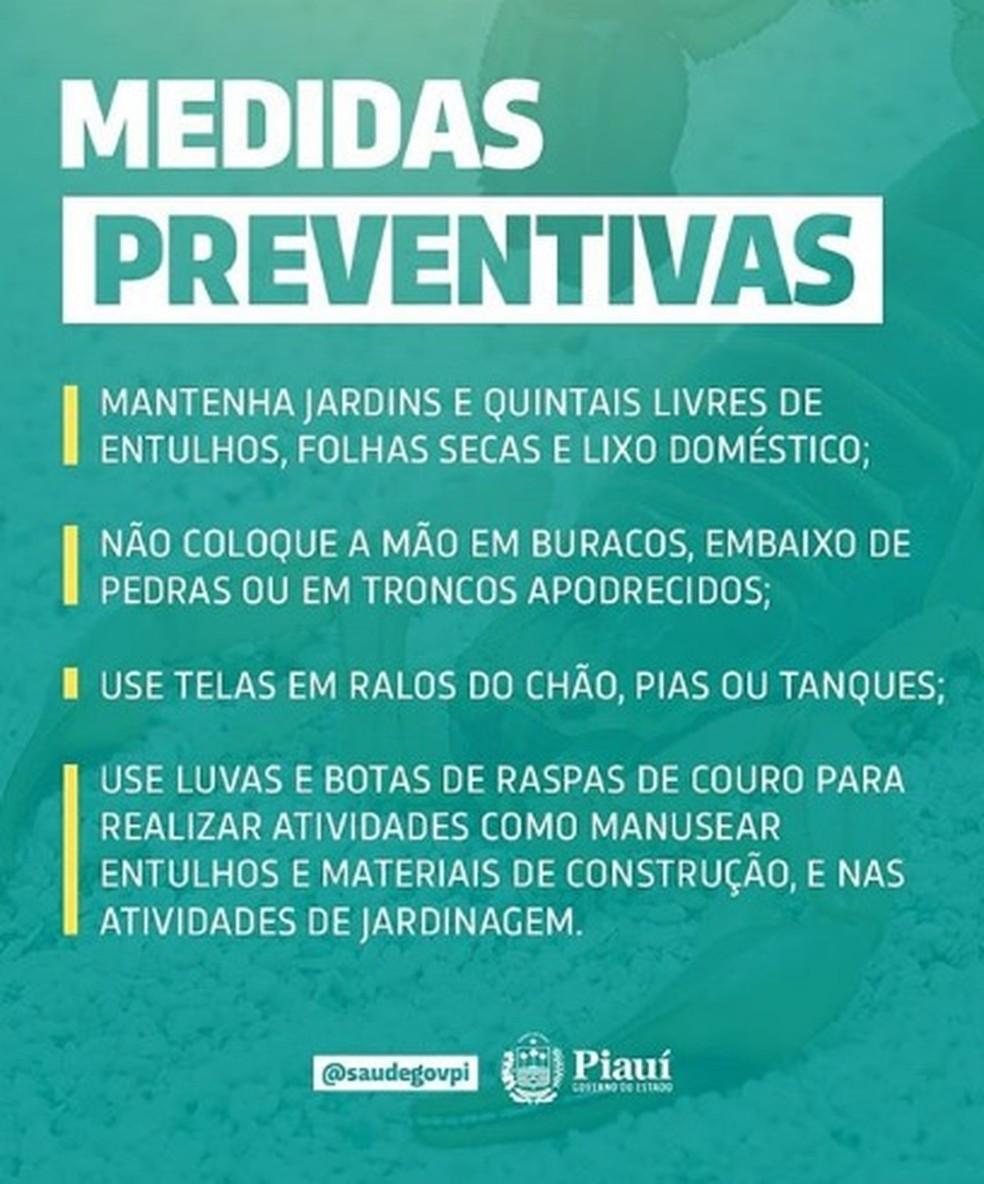 Medidas preventivas contra escorpião — Foto: Divulgação/Sesapi