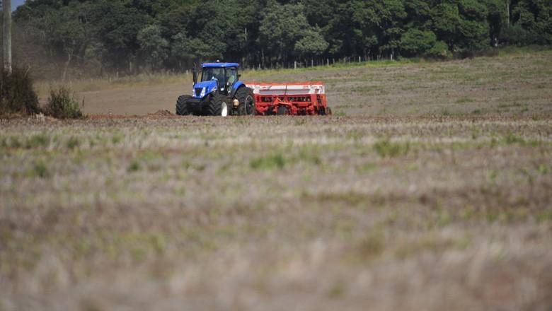 campo-agro-agronegócio-fazenda-lavoura-interior-propriedade-rural (Foto: Ernesto de Souza/ Ed. Globo)