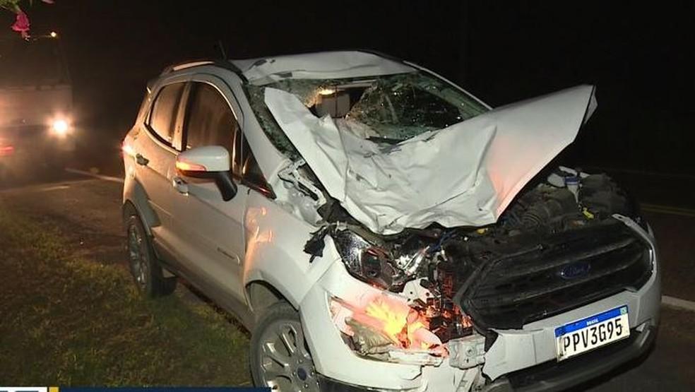 Carro fica destruído após bater em cavalo, em Linhares — Foto: Reprodução/ TV Gazeta