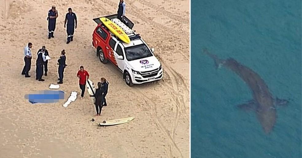 Surfista é morto por tubarão na Austrália — Foto: Reprodução/Twitter