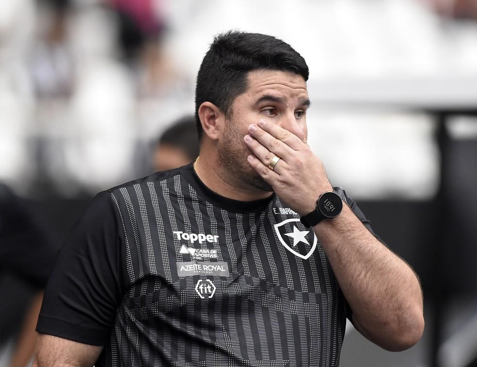 Barroca, técnico do Botafogo — Foto: André Durão