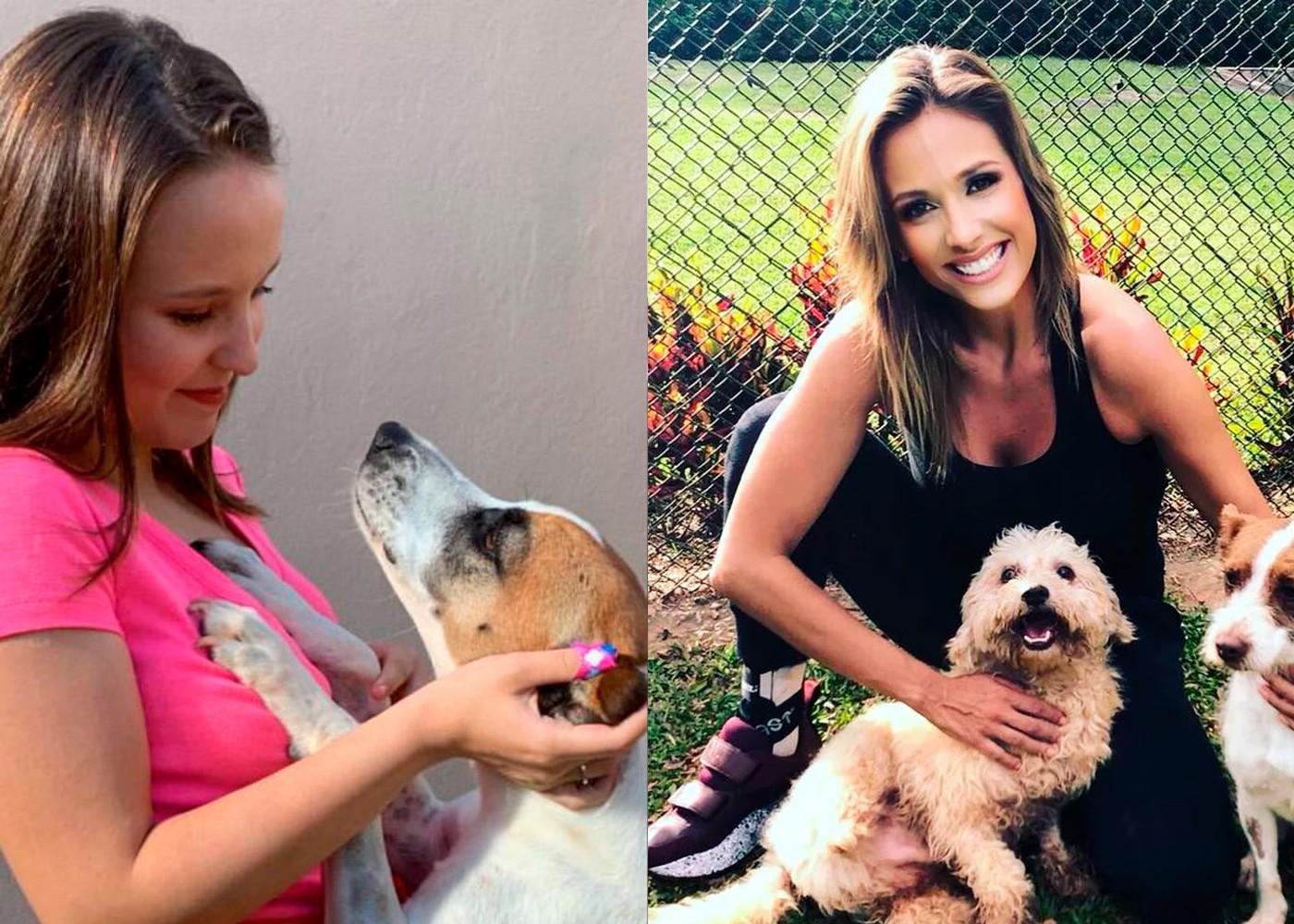 Luisa Mell critica Larissa Manoela por repassar vira-lata adotada; atriz diz que fez 'ato de amor'
