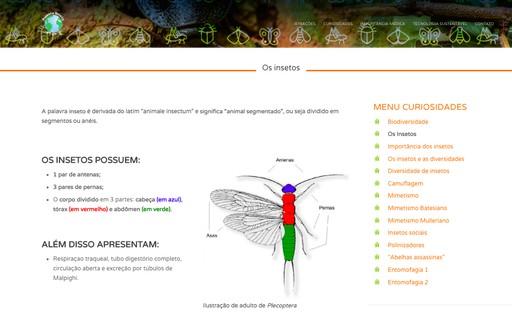 Único zoológico de insetos do Brasil pode ser visitado virtualmente