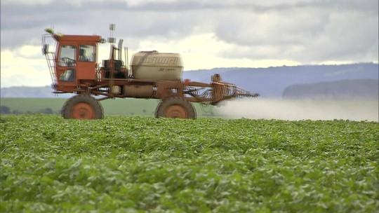 Agrotóxicos: Anvisa divulga lista com substâncias que podem sair do mercado