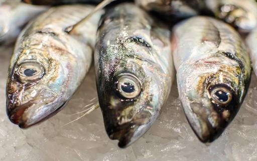 China suspende importação de peixes de empresa brasileira após teste positivo para Covid