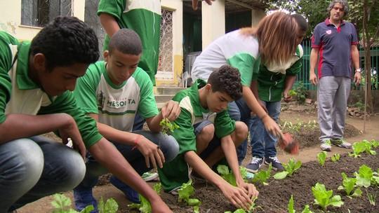 Aluno Nota 11: estudante cria projeto Horta Solidária