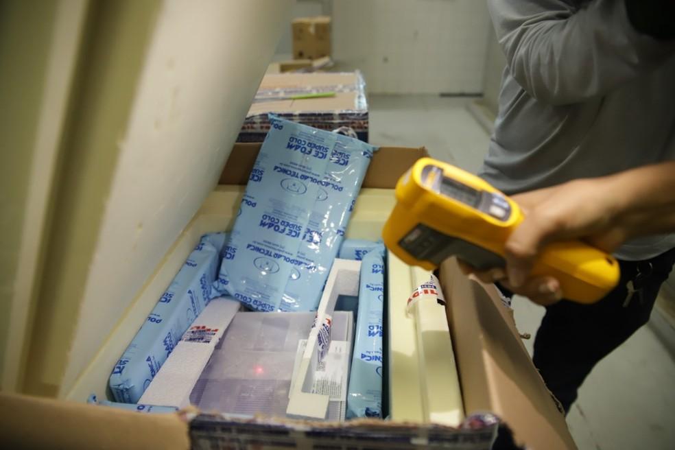 Vacinas da Pfizer chegam ao Piauí nesta terça-feira (8) — Foto: Divulgação /Sesapi