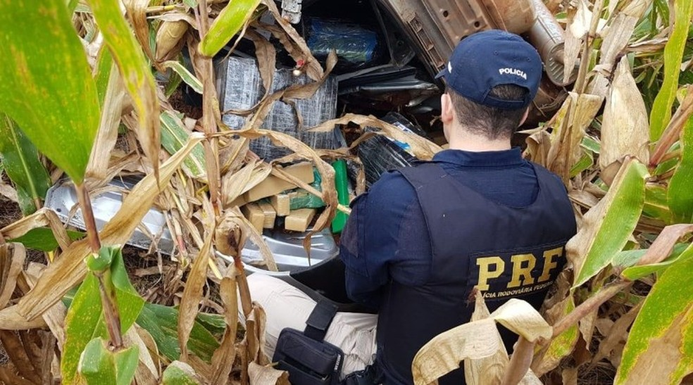 Droga estava dividida em tabletes  — Foto: PRF/Divulgação