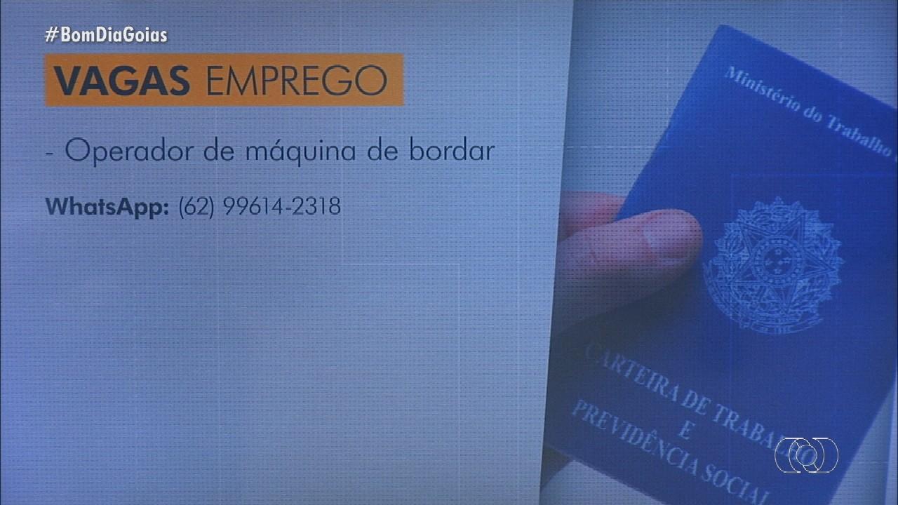 Fique atento às vagas de emprego em Goiás