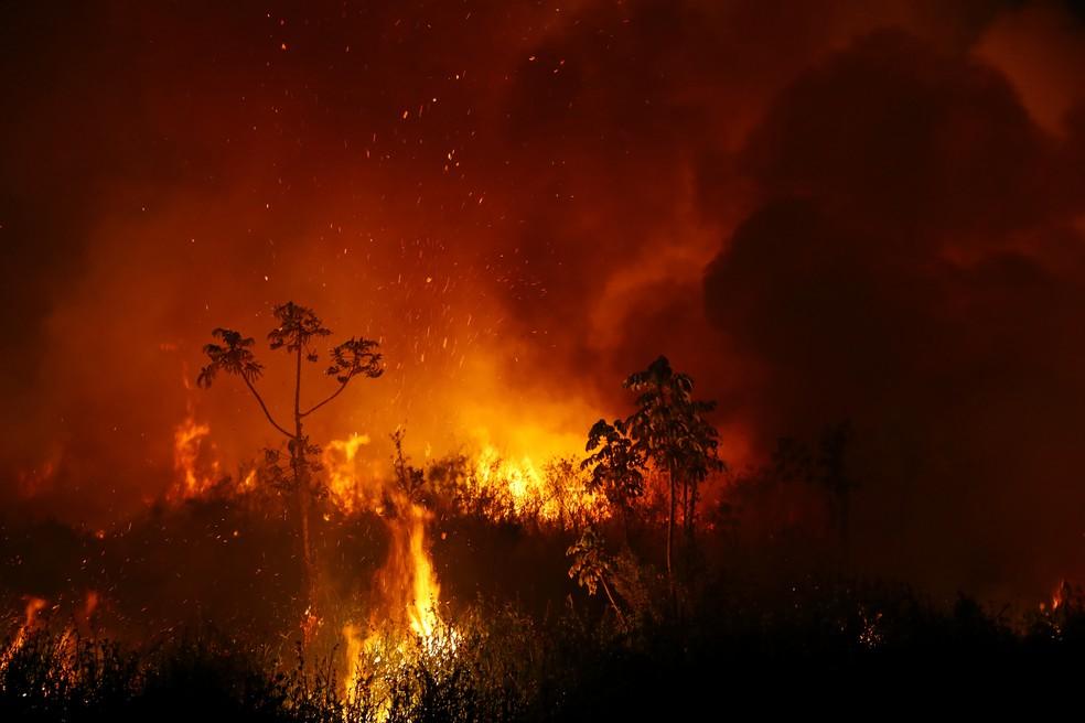 Nuvens de fumaça são vistas enquanto as árvores queimam entre a vegetação durante incêndio no Pantanal — Foto: Amanda Perobelli/Reuters