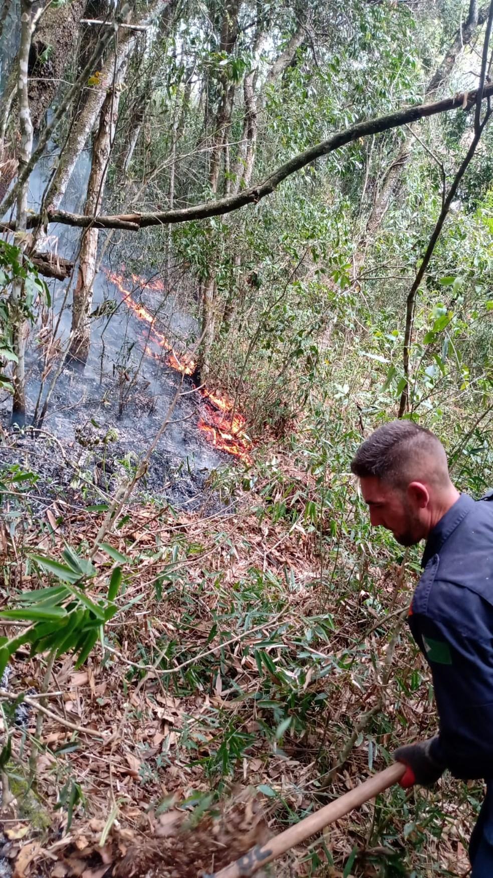 Novo foco de incêndio mobiliza equipes na Serra do Japi em Cabreúva (SP) — Foto: Divulgação