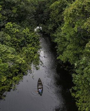 Medicina indígena na Amazônia