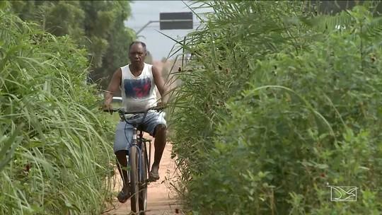 Ciclistas reclamam de condições de ciclovia na BR-010 em Imperatriz