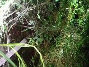 Corpo estava em uma cisterna com cerca de quatro metros de profundidade (Foto: Corpo de Bombeiros/Divulgação)