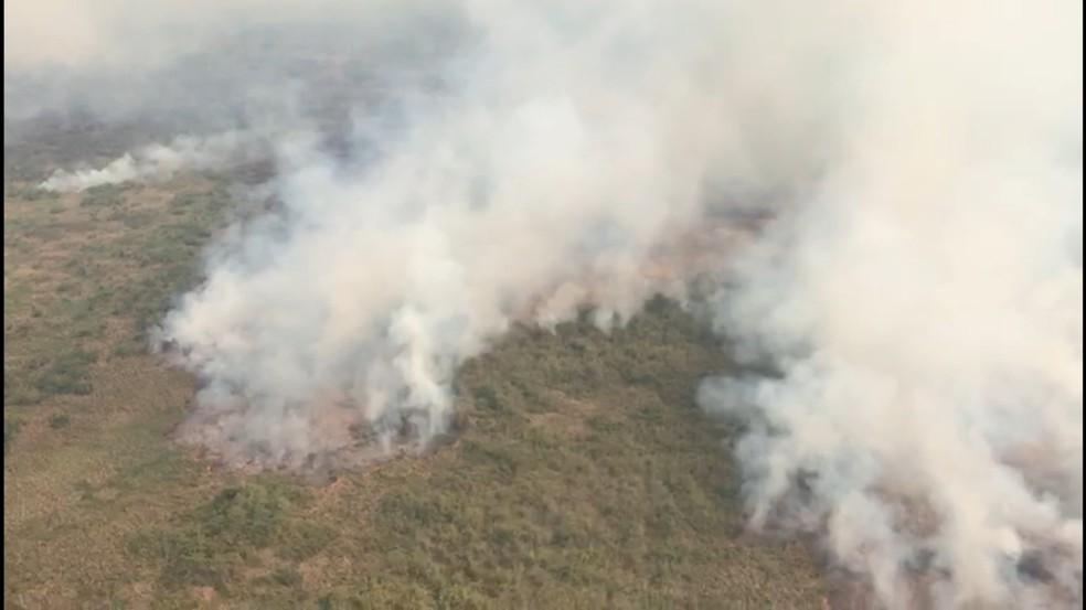 Dois grandes incêndios já atingiram 35 mil hectares do Pantanal em Mato Grosso, na região de Poconé — Foto: Batalhão de Emergências Ambientais (BEA)