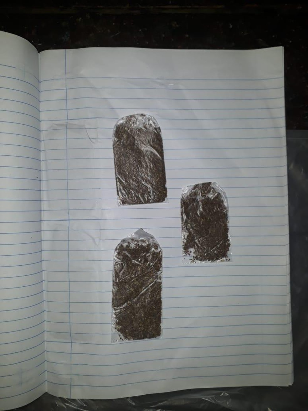 Maconha estava anexada na folha de um caderno  — Foto: Sejusp/Divulgação