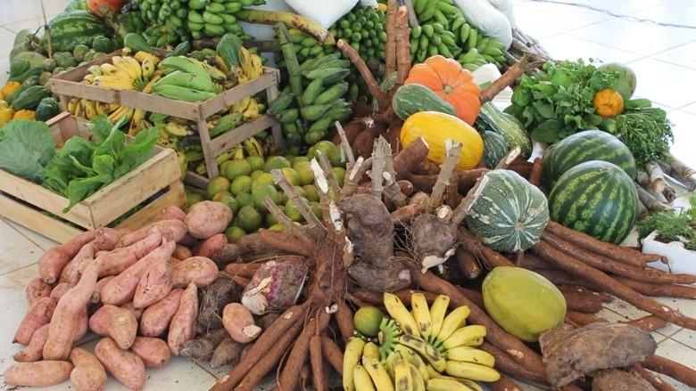 Governo abre dia 14 de maio chamamento público para compra de alimentos a escolas de Porto Velho