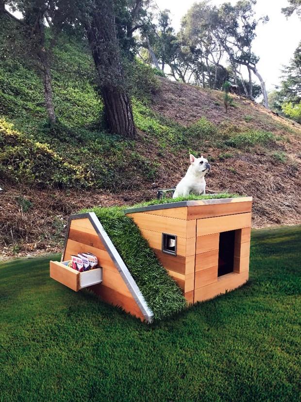 Casinha de cachorro sustentável (Foto: DesignBoom/Studio Schicketanz/Reprodução)