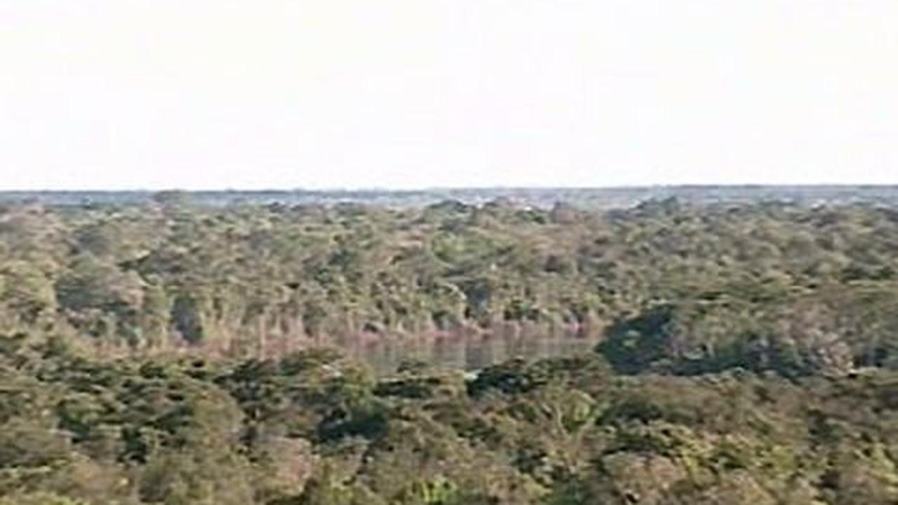 Compra de terra na Amazônia é fácil