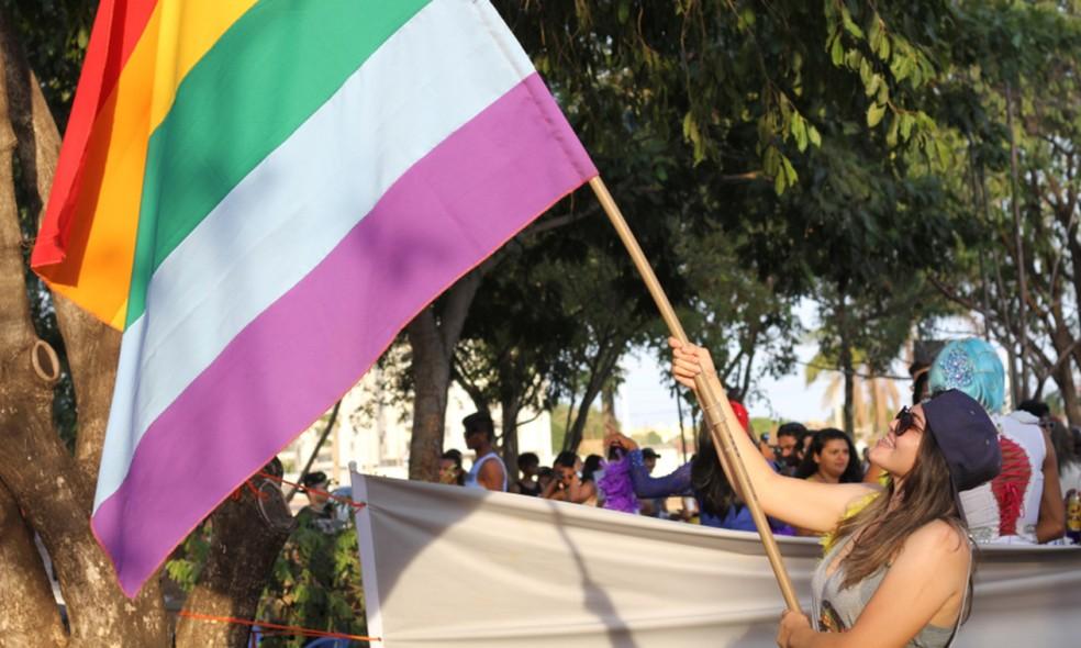 Segunda edição da Semana da Diversidade sexual terá parada gay, atividades e show (Foto: Divulgação/Governo do Tocantins)