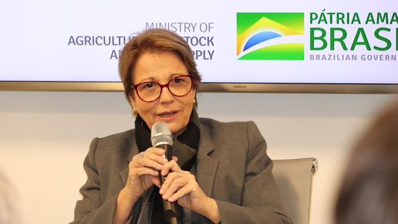 Tereza Cristina (Foto: Divulgação/MAPA)