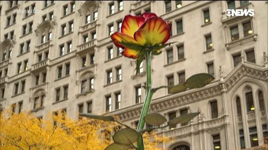 Instalação de arte chama a atenção em Downtown Manhattan