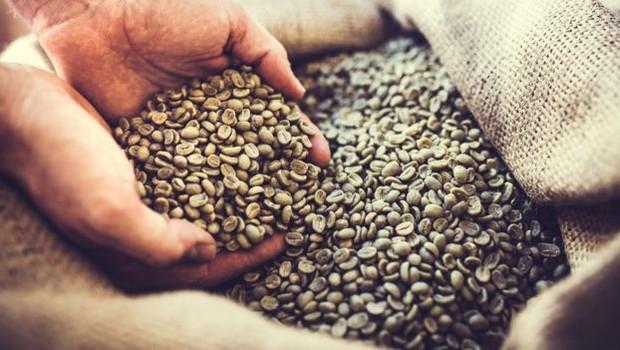 A cafeína precisa ser retirada dos grãos de café quando eles ainda estão verdes, antes da torra (Foto: Direito de imagemRYANJLANE/GETTY IMAGES)