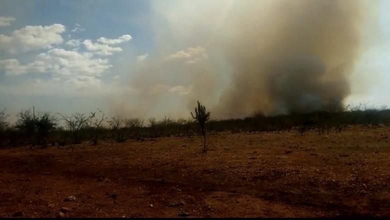 incêndio-pernambuco (Foto: Reprodução Redes Sociais)